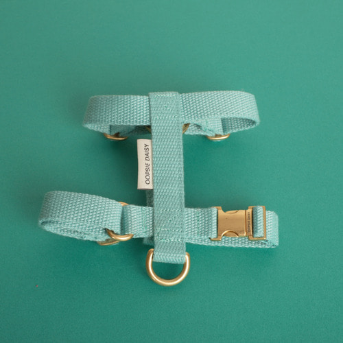 HARD HARNESS_MINT