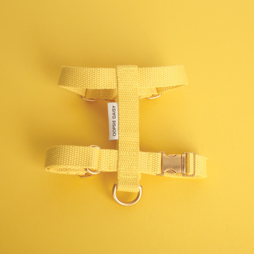 HARD HARNESS_YELLOW
