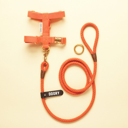 HARDTYPE HARNESS SET
