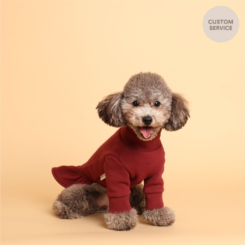 NAME TURTLENECK DRESS_BURGUNDY