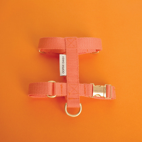 HARD HARNESS_ORANGE