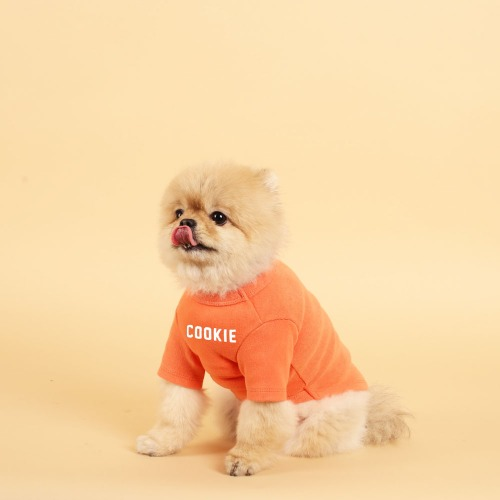 NAME T-SHIRT_VINTAGE ORANGE