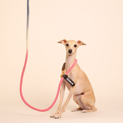 [LIMITED] (TWO TONE) SMART LEASH_PINK NAVY